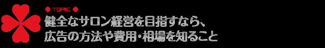 Budget_広告予算について,toruchang.jp